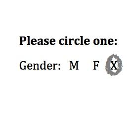 Third Gender